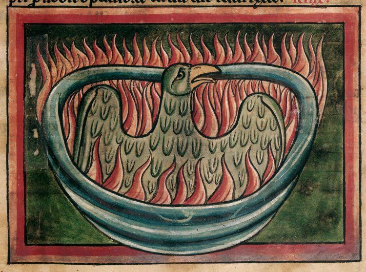 Phoenix 13th century bestiary