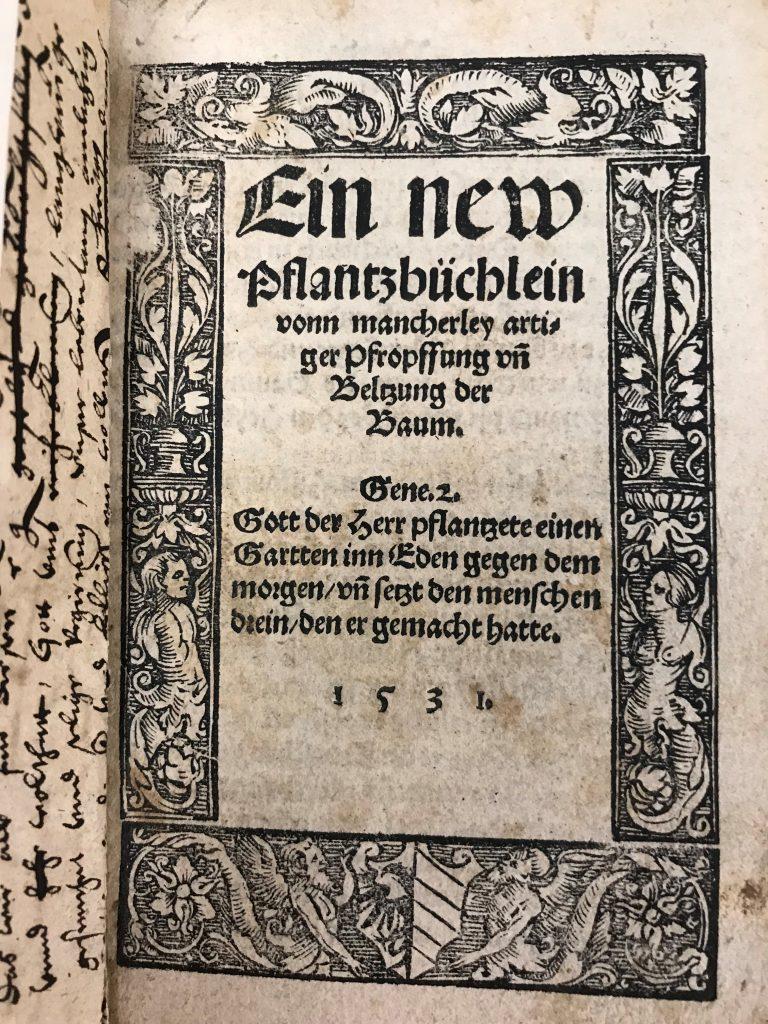 Ein neu Pflanzbüchlein, Johann Domitzer (1531)