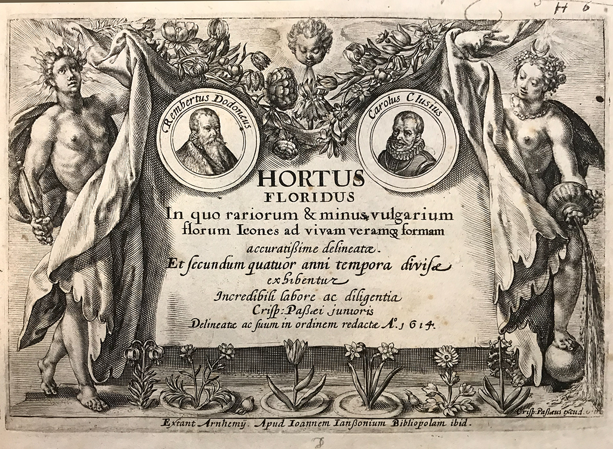 Hortus Floridus, Crispijn de Passe the Younger (1614)