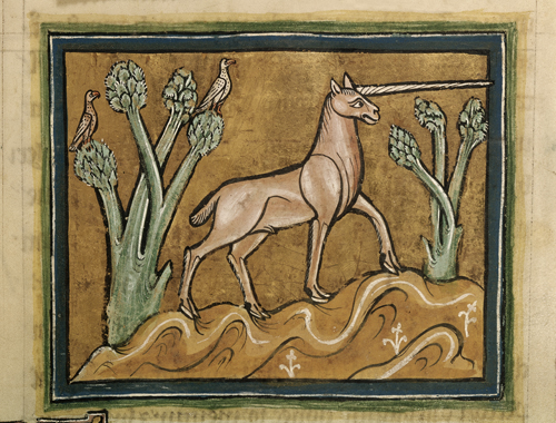unicorns in medieval manuscripts printed pearls